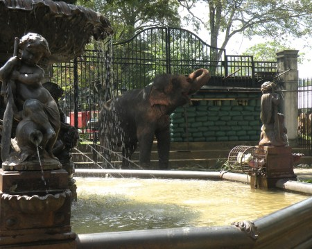 To me, this cast iron fountain is synonymous with the Kandy Perahera, with elephants all around. It was sad to see the guard post still in evidence - even after the war.