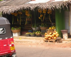 The fruit shop opposite my lane