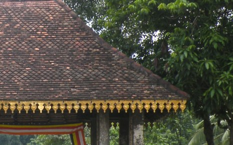 Upcountry Roof