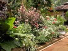 Making a Garden 25
