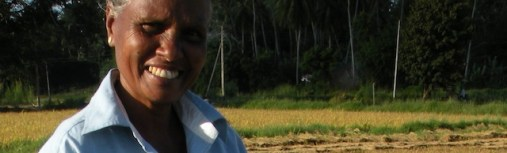 Harvest Time and the Maalu Man 11