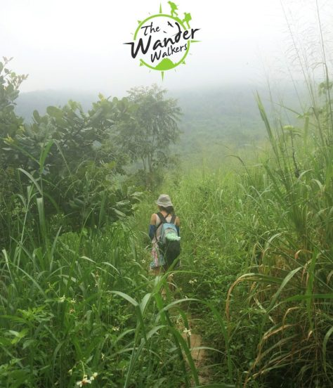 Silent hill at Mount Chua Chan Mountain