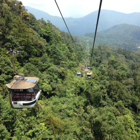 Cable Car. Flying above the trees