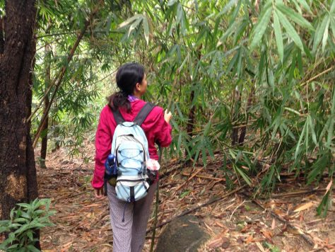 Trail hunting in Nui Dinh