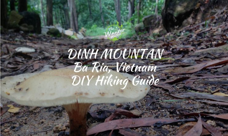 Hiking In Vietnam: Dinh Mountain (DIY Guide)