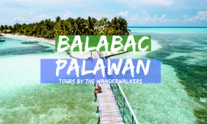 Balabac Palawan Tours by The Wanderwalkers