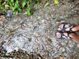 Much of the way to Singalong Campsite follows the stream. Your feet will definitely get wet during rainy days.