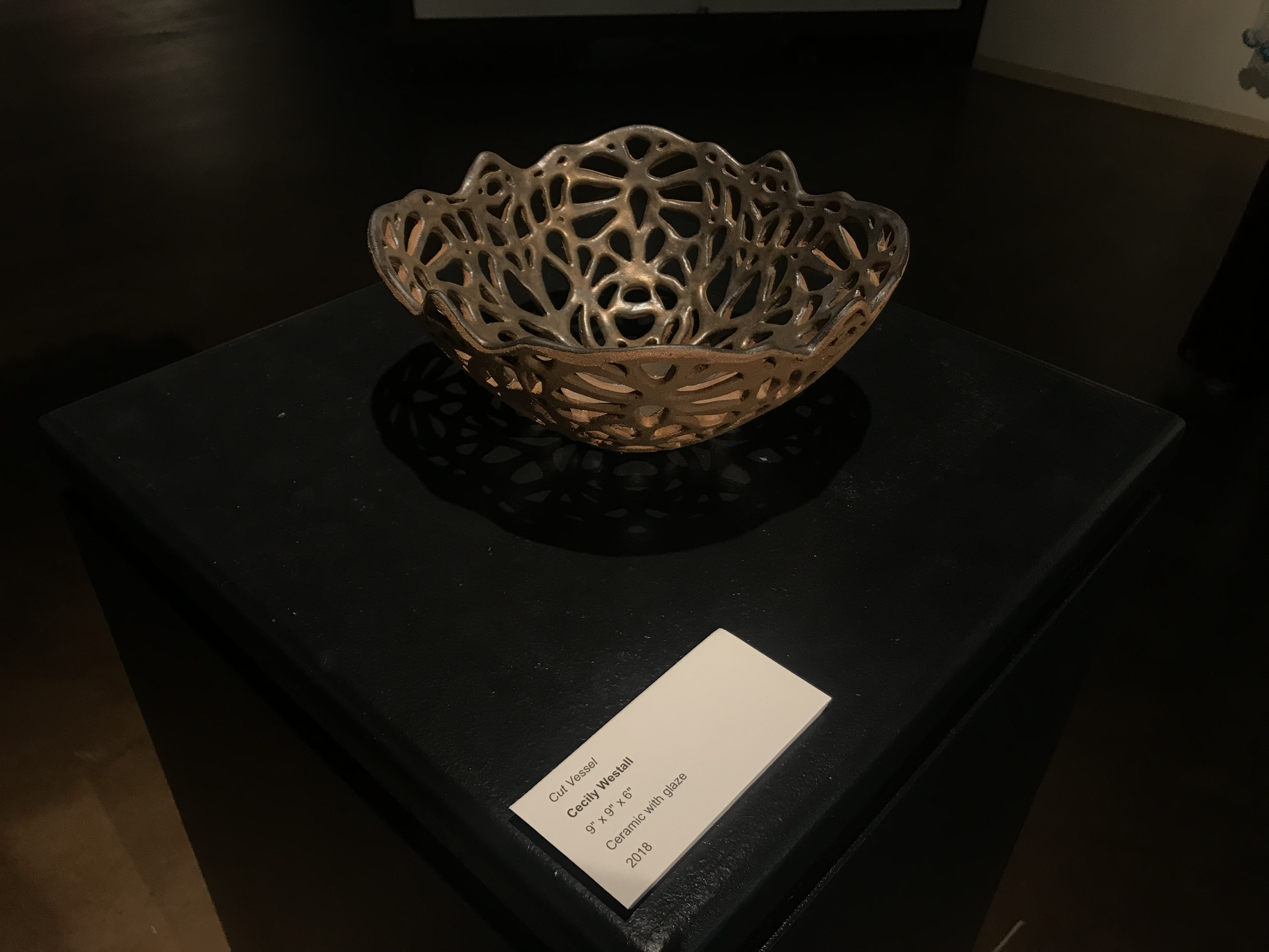 Cut Vessel by Cecily Wastall