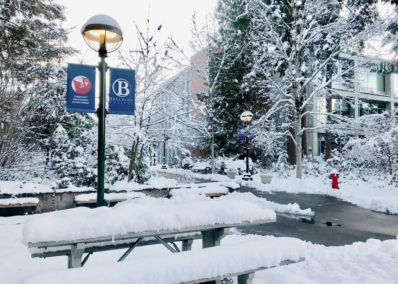 Snow Online