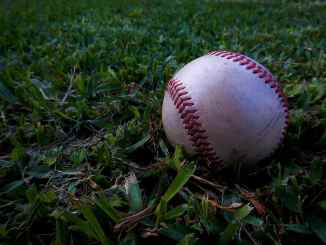 a baseball lying in grass