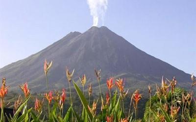 El Tweet Tweet Watchers Al menos cuatro de los siete volcanes activos en Costa Rica, Arenal (Alajuela), Rincón de la Vieja (Guanacaste), Turrialba (Cartago) y Poás (Alajuela), están en la mira de los científicos tras el terremoto de magnitud 7,6 que sacudió al país el 6 de septiembre de 2012.  Incluso un pequeño cambio en uno de estos gigantes podría causar una erupción científicos, dijo.  Según los especialistas están de acuerdo Observatorio Vulcanológico y Sismológico de Costa Rica (OVSICORI-A) y la Red Sismológica Nacional (RSN: ...