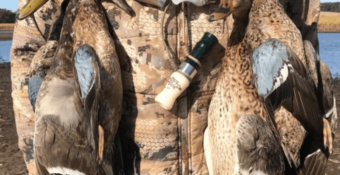 Duck Feeder Call