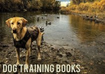 Gun Dog Training Books