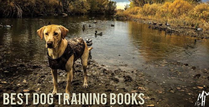 Gun Dog Training Books