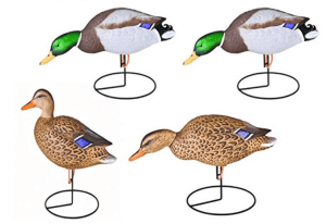 field duck decoys