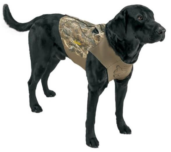 dog vest for duck hunting