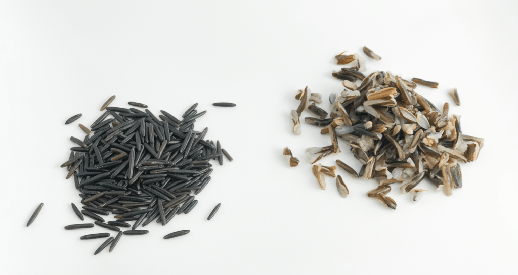 wild rice, cooked and uncooked
