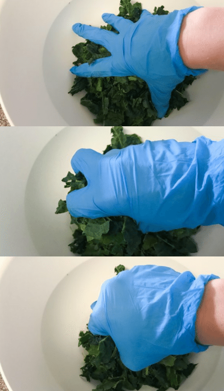 squeeze and massage the kale