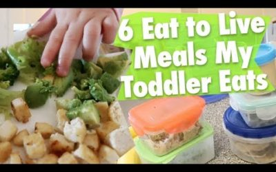 6 Eat to Live Meals My Nutritarian Toddler Eats YOUTUBE