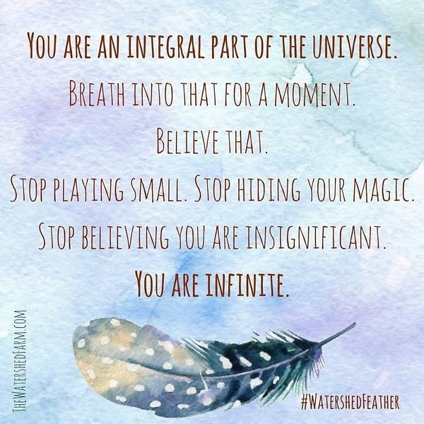feather_you are an integral part of the Universe