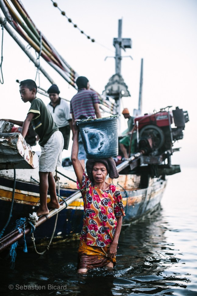 A fisherman's wife receives the day's haul in a large bucket off the coast of northern Bali. Indonesia, June 2014.