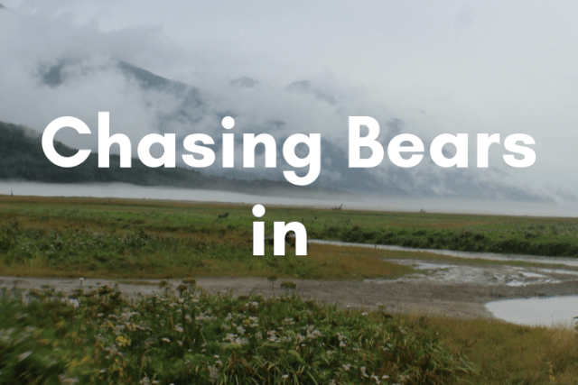 Guest Post: Chasing Bears in Alaska