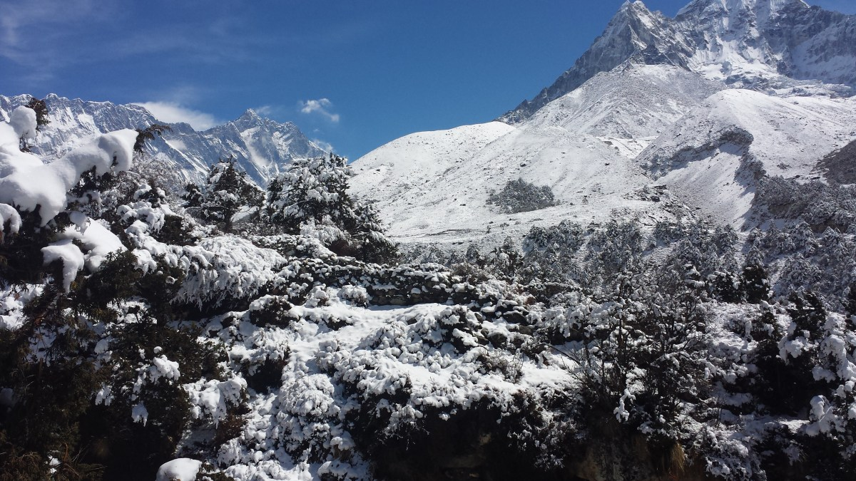 Trekking to Everest Base Camp Part 2.2: Teahouses, toilets, food and drink