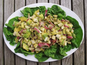 Salads, vegetable, avocado and hearts of palm salad with coriander vinaigrette 1