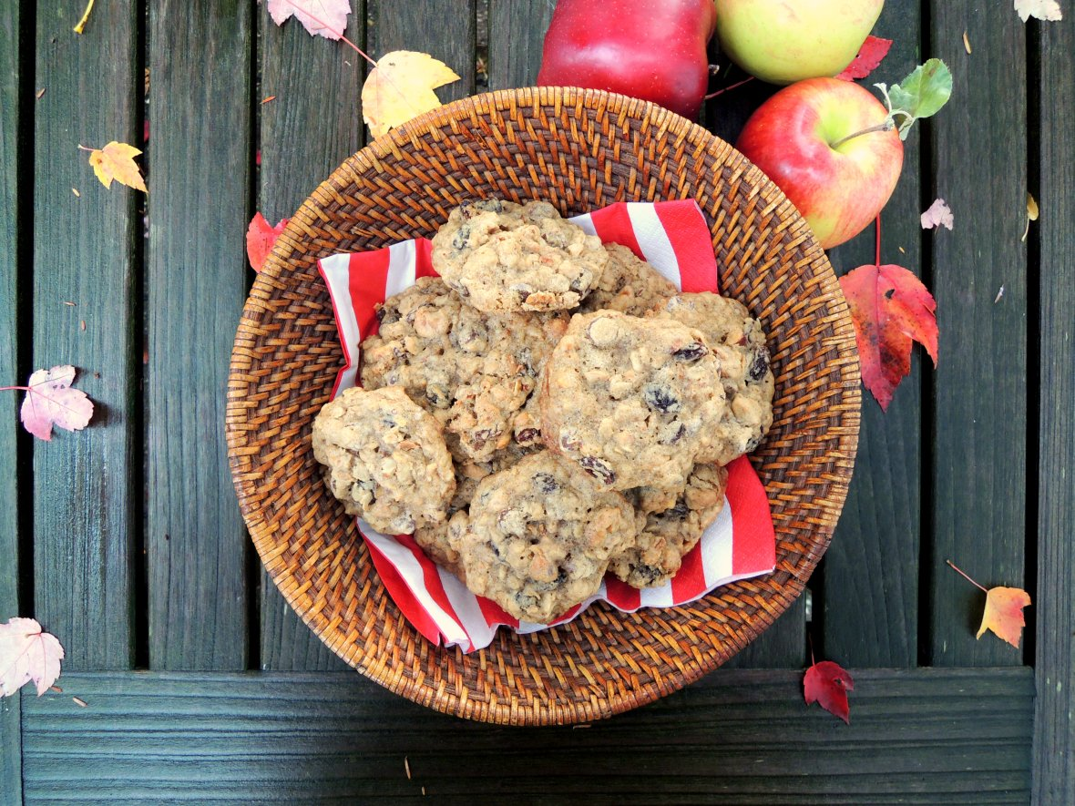 Picnics, apple picking, Andrew's oatmeal irresistibles 1