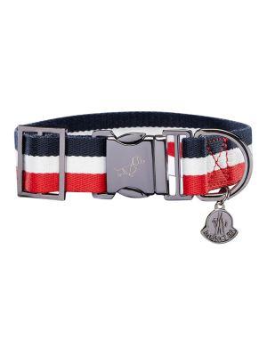 X Poldo Dog Couture Striped Collar