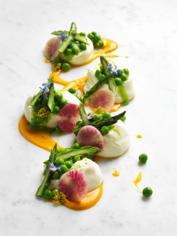 Asparagus and Burrata