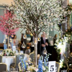 Chair Covers For Weddings Shropshire Desk Posture Best Blossom Trees - Wedding Lounge