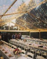 mcmurtrie-wedding-glasshouse-marquee