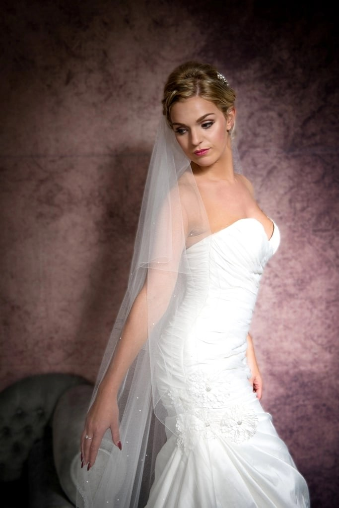 Portrait of bride wearing a chapel length veil with scattered diamantes