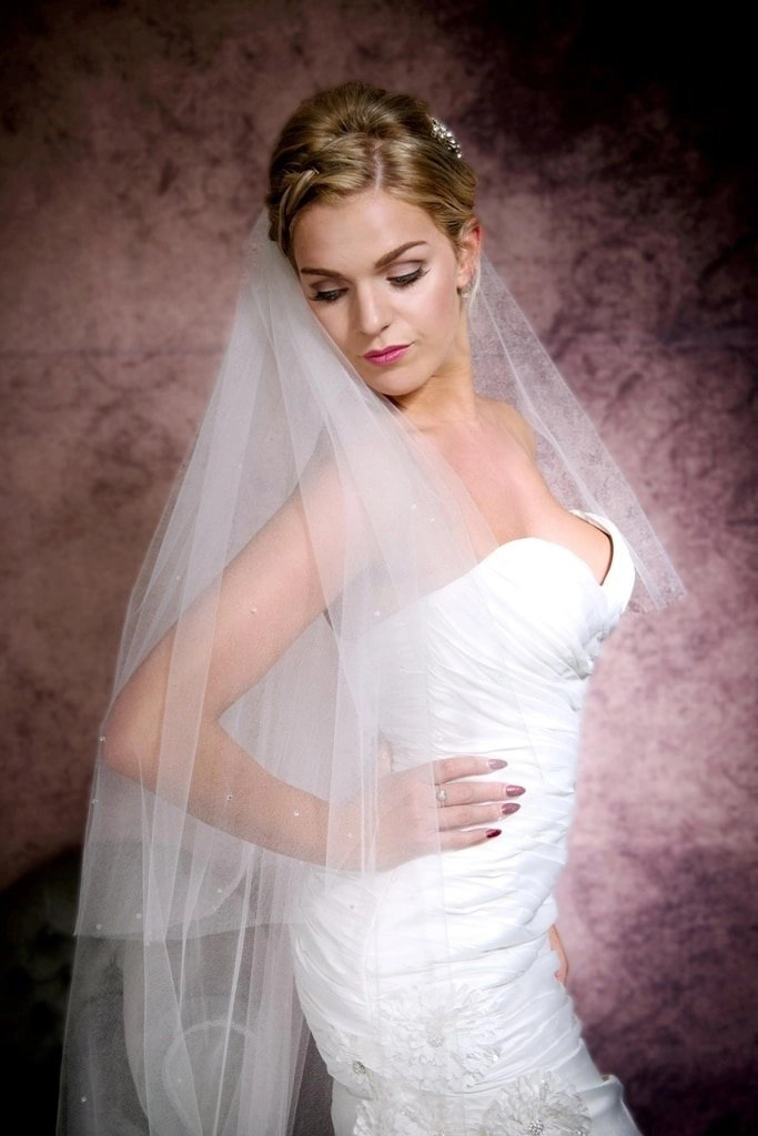 Portrait of pretty bride in a cathedral length veil with Ab crystals