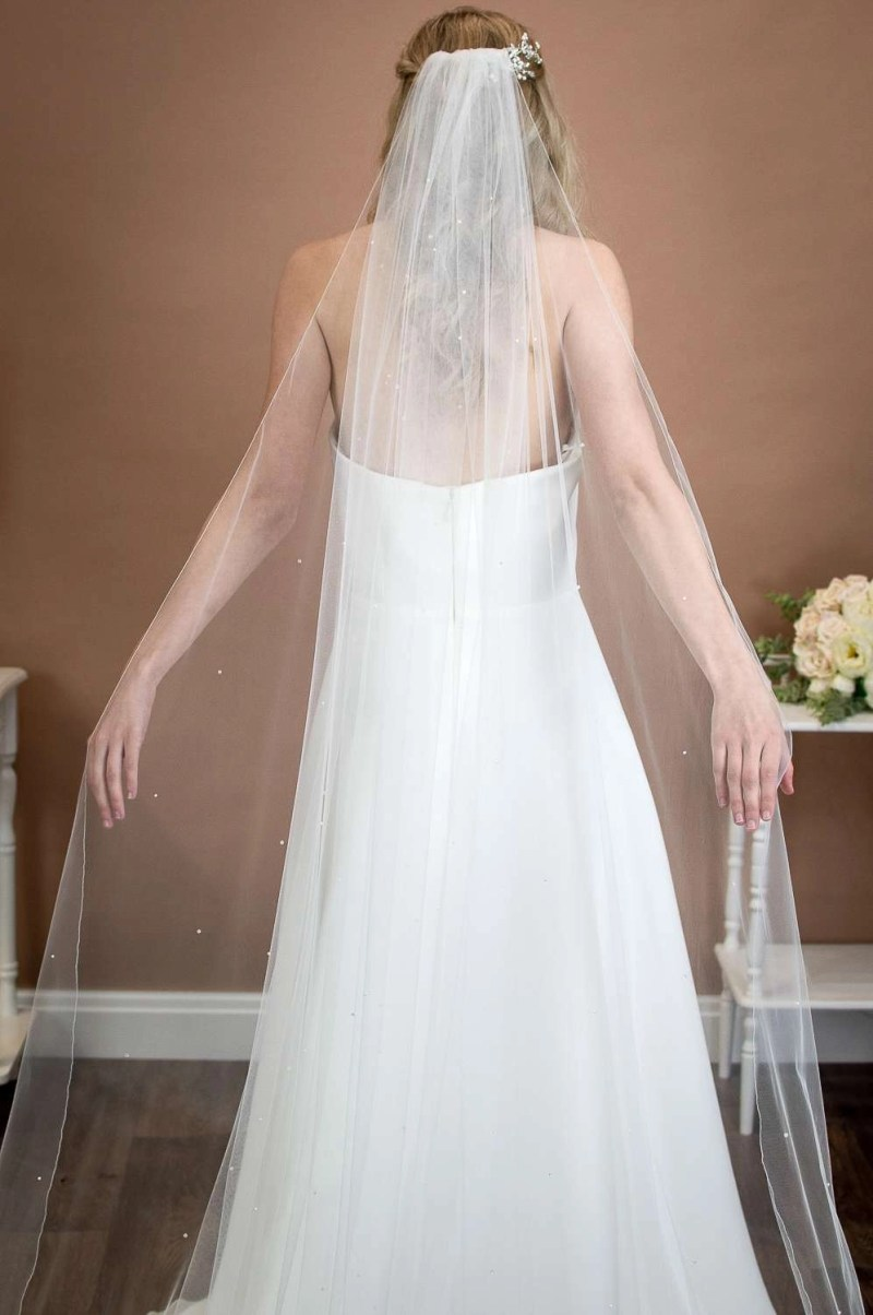 Alexis - cathedral length wedding veil with pearls and crystals on bride back shot