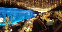 Top Wedding Venues In Singapore Suit Theme