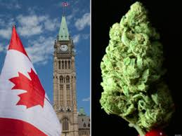 UN Treaties Can't Stop Legalization In Canada