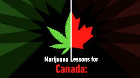 Weed lessons for Canada from Colorado's chief medical officer
