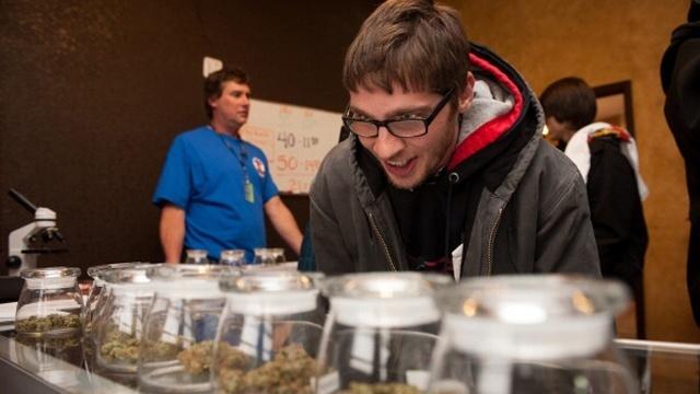 Colorado marijuana's potency five times US average