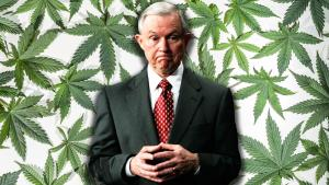 Jeff Sessions Admits There 'May Well Be Some Benefits From Medical Marijuana'
