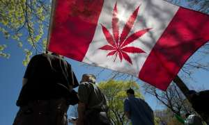 All eyes on Canada as first G7 nation prepares to make marijuana legal