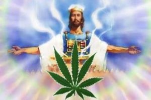 'Marijuana is a gift from God.' A battle over pot pits the Mormon Church against an unlikely group: other Mormons