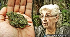 80-year-old medical marijuana patient jailed over a few grams of weed