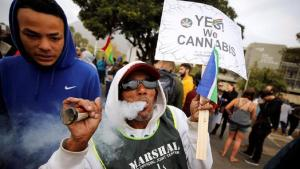 Presidential aspirant to make Nigeria marijuana exporting giant