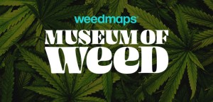 Weedmaps Announces The Museum of Weed