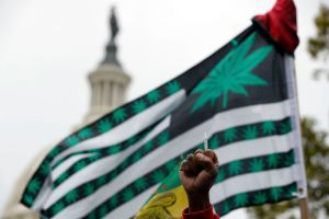 How the Pot Movement Changed in 2018