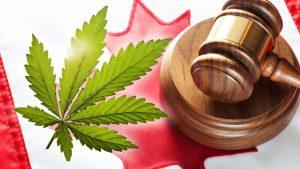 Trudeau's Liberals move to grant pardons for old pot possession convictions
