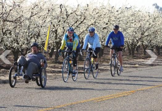 Blossom Bike Ride 2019