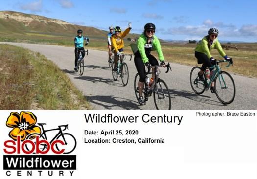 Wildflower Century 2020
